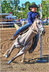 Paris Fair - Pole Bending 32 (2.6 Million + views!!! Thank you!!!) Tags: canon eos 70d paintshoppro2018 psp2018 70200mm ef70200f4l efex topaz paris fair ontario canada horses equestrian sport action competition polebending