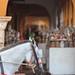 Blindfolded horse