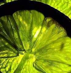 two lemon slices MM (petermüller21) Tags: macromondays green