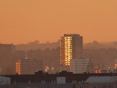 Golden windows (seikinsou) Tags: brussels belgium bruxelles belgique autumn sunset golden window skyscraper