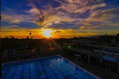 06 (morgan@morgangenser.com) Tags: sunset pretty beautiful red orange colorful evening dusk clouds blue palmtree santamonicacollege smc silhouette sun yellow cool