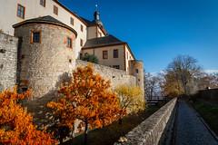 Autumn at Marienberg Fortress (nils_gagerrang) Tags: würzburg marienberg fortress fall leaves trees landscape bavaria