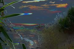 Sun up (Dreaming of the Sea) Tags: manipulation sliderssunday tamronsp2470mmf28divcusd nikond7200 outdoor ocean sky sea surf trees twilight dusk dawn hss