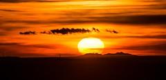 Coucher soleil sur le Canigou depuis les hauteurs de Meyrargues(13) (bruno Carrias) Tags: canigou meyrargues provence provencealpescôtedazur sunset soleil bouchesdurhône pyrénéesorientales