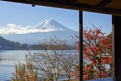AI1A3242 (arcaswiss) Tags: mountain mtfuji autumn colors lake windows cloudy scenics fujiyama trees lakekawaguchi