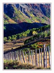 Along the Fenceline in the Colorado Rockies - 1991 (sjb4photos) Tags: colorado coloradorockies epsonv500 fence fencefriday hff