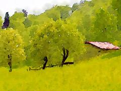 Alpe del Ginestrino a Rezzago (Enchanted Loom) Tags: alpedelginestrino rezzago wbonsai painterly awardtree