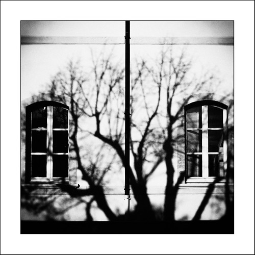 Au pays des Ombres / In the Land of Shadows #3