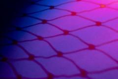 Red and Blue Shadow (adamopal) Tags: canon canon7d canon7dmarkii canon7dmkii shadow shadows redandblue adaptalux adaptaluxstudio adaptaluxstudiolighting adaptaluxstudioexperiment lightingexperiment experiment experimental colorful diyshot diy diyexperiment coolshot random randomshot papertexture paper texture macro macro100mm 100mm red pink magenta purple blue black