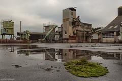 . green island (. ruinenstaat) Tags: tumraneedi ruinenstaat abandoned lostplace urbex derelict neglected nikond750 platzderaltensteine inruins industrial industriekultur industrie