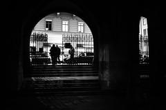 shady (gato-gato-gato) Tags: apsc fuji fujifilmx100f street streetphotography x100f autofocus flickr gatogatogato pointandshoot wwwgatogatogatoch zürich schweiz ch black white schwarz weiss bw blanco negro monochrom monochrome blanc noir strasse strase onthestreets streettogs streetpic streetphotographer mensch person human pedestrian fussgänger fusgänger passant switzerland suisse svizzera sviss zwitserland isviçre zuerich zurich zurigo zueri fujifilm fujix x100 x100p digital