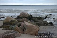 Boiensdorf (baltickiter) Tags: ostsee strand salzhaff sturm surfen wellen wasser kitesurfen nikon