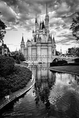 Cinderella Castle in Black and White (Justy.C) Tags: disney disneyworld fantasyland florida magickingdom thehub wdw blackandwhitephotography cinderellacastle hdrphotography orlando waltdisneyworld