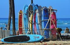 Oahu Waikiki Surfing (gerard eder) Tags: world travel reise viajes america northamerica usa unitedstates hawaii alohastate oahu honolulu waikiki waikikibeach surf surfing surfboards beach playa strand paisajes panorama landscape landschaft tropical tropicalisland southsea outdoor sea seascape ocean