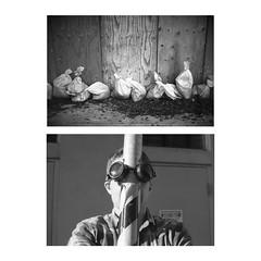 . (m_travels) Tags: diptych goggles bags man portrait kodaktrix400 film analogue homedevelopedfilm blackandwhite cinestilldf96