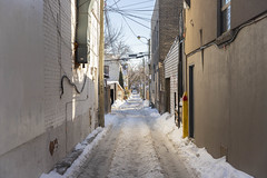 Greektown Laneway (A Great Capture) Tags: agreatcapture agc wwwagreatcapturecom adjm ash2276 ashleylduffus ald mobilejay jamesmitchell toronto on ontario canada canadian photographer northamerica torontoexplore winter l'hiver 2019 snow snowy lakne lane laneway greektown danforth thedanforth