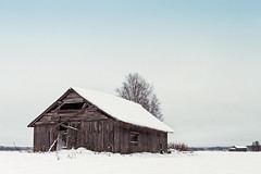 Old Barn Houses On The Snowy Fields (k009034) Tags: 500px wooden copy space finland scandinavia tranquil scene agriculture bare tree barn house branches building coldness countryside farm farming fields frost nature no people north old rural sky snow trees winter frozen cold temperature ice teamcanon copyspace tranquilscene baretree barnhouse nopeople