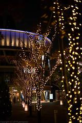 Far Xmas-tree (gemapozo) Tags: kourakuen xmastree tokyodomecity pentax night rrs illumination tokyo k1mkii japan 東京都 日本 jp hdpentaxdfa50mmf14sdmaw 東京ドームシティ 夜景 イルミネーション ミーツポート