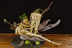 Panais entrelacés (DOMVILL) Tags: bois domvill france naturemorte nord panais wwwflickrcompeoplevildom légumes