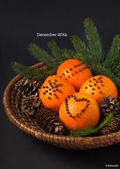 December 20th (sch.o.n) Tags: