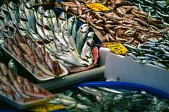 Istanbul Fish Market (Packing-Light) Tags: 35mm eurasia istanbul turkey analog emulsion film fish market food display fuji velvia rvp50 nikon f100