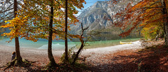 Bohinj Lake (dieLeuchtturms) Tags: julischealpen bohinjskojezero herbst europa see bergsee panorama 21x9 alpen slowenien 235x100 7x3 alpigiulie alps bohinjsee europe julianalps julier julijskealpe lakebohinj republikaslovenija slovenia autumn fall lake