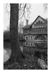 L'ancienne buanderie du château de Ferrières (DavidB1977) Tags: france îledefrance seineetmarne ferrièresenbrie fujifilm x100f monochrome bw nb buanderie étang arbre taffarette