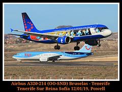Pitufeando (Powell 333) Tags: tenerife sur reina sofía gcts spain tenerifesurreinasofía tenerifesur reinasofía reinasofia boeing 7378 max ootmy boeing7378max boeing7378 boeing737 737 tuiairlinesbelgium tui airlinesbelgium airlines belgium tuiairlines airbusa320214 oosnd airbus320214 airbusa320 airbus a320 214 320 airbus320 brussels brusselsairlines avión avion aircraft airport aviones aeropuerto aena airways canoneos80d eos80d canon eos 80d canarias islas islascanarias powell españa plane planes pitufos smurfs
