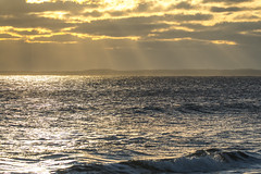 Rays waves and light (SarahRydgren) Tags: parkerriver newengland massachusetts wildlife nature morning beach dunes coast eastcoast sunrise