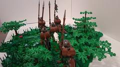20181215_171534 (Treunsty) Tags: lego brickwarriors minifig figurine bricks blocks castle médiéval moyenâge heavy rider
