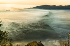 First light of day | Bromo (kachaneawsuparp) Tags: sony sonya7rii 1635 1635gm 16mm gm g gass indonesia bromo emount 35mm tree peatkacha lens landscape l fe fullframe f28 fulframe frog mist asia a7 a7rii 15 1635mm