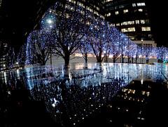 Winter Lights festival - Canada Water (#Dave Roberts#) Tags: winter lights electric canada water london uk meetup steve photo walks january 2019 reflections