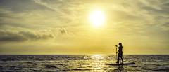 Paddleboarding (The Grand Brighton) Tags: croatia hrv