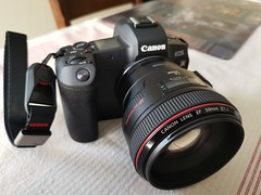 New toy Canon EOS R with 50 mm 1.2 love this set up (SAVEY FOTO) Tags: canon5012 eosr awesome r