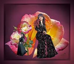 Rose-Mary (SØS: Thank you for all faves + visits) Tags: art artistisk kunstnerisk manipulation kunst solveigøsterøschrøder fractals farver colors form artistic digitalartwork inexplore 100views 300views 500views