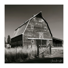 Barn (Jean-Marc Vogel Photography) Tags: barn grange oregon washington black white bw blackandwhite monochrome noir blanc gris noiretblanc nb noirblanc schwarz weiss blanco nero rural campagne ferme isolée isolement bois wood country countryland farm farmland northamerica oldbarn old woodenbarn