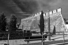 muralla medieval (medieval wall) (miguelmoll387) Tags: bn bw blancoynegro muralla wall jardín cipreses nikon nikon7100 garden castillo castle castillalamancha
