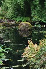 reflection of a stone (Suzanne's stream) Tags: pond teich reflection stone stein inverewegarden poolewe scotland schottland spiegelung