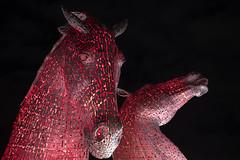 Kelpies (johnawatson) Tags: xf35mmf14r fujifilmxpro2 scotland kelpies publicart nightshot nightphotography statue horse falkirk lowlight art metalic red