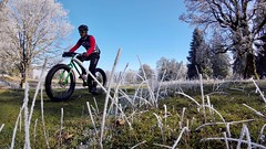 Hands Got Warm Again (29in.CH) Tags: fall autumn fatbike ride 18112018 pasture white ice