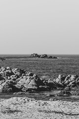 Monterey (Eric Bloecher) Tags: landscape ocean beach rock rocks sand blackandwhite black white bw view travel sea beautiful birds monterey bay california water sky waves tide tides wave vacation coast blackwhite blackwhitephotos