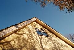 (mari-ann curtis) Tags: 35mm film sunshine light shadows dappled autumn blue sky golden trees leaves nostalgia memories
