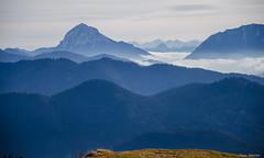 Guffert above the clouds (peter-goettlich) Tags: guffert unnütz bayerischevoralpen tauern fog cloud mountains berge nebel rofan alpen alps wolken