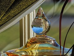 Inside Looking Out (clarkcg photography) Tags: glass dish lid knob window curtain pane inside outside lookingout cof045 indoorcloseup windowwednesday cof045mari cof045dmnq cof045patr cof045uki 7dosdoorswindowsmacromonday cof045dero