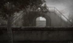 Bridges (Loegan Magic) Tags: secondlife bridges trees blackandwhite arch