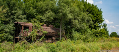 Stuck. (Jim Frazier) Tags: 2018 20180819galtlocomotive abandonded abandoned aged apparatus august bluesky broken brush country decay decrepit derelict deterioration devices disrepair engines equipment foliage forest forgotten galt gloriousnoise green heavymetal hopkinstownship il illinois iron jimfraziercom jungle landscape lifefindsaway locomotives machinery machines mechanical metal nature naturefindsaway old overgrown q4 railroads railways roadtrip rot rundown rural rust scenery scenic shabby siding steam steel study summer sunny tattered tired trains transportation trees undergrowth weathered woodland woods worn f10 fastpictures f20 instagram