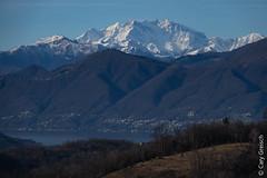 Le Monte Rosa et le Lago Maggiore vus depuis Bedigliora (Ticino) (25/12/2018 -06) (Cary Greisch) Tags: bedigliora che carygreisch icó lagomaggiore malcantone monterosa monterosagruppe see switzerland ticino lac