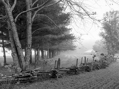 Fence Line with Barn B&W (Neal3K) Tags: georgia northgeorgia fog dillardga trees landscape