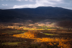 End of Fall Season in Browntown Valley (Vladimir Grablev) Tags: view usa landscape nationalpark mountains fall appalachian morning shenandoah national virginia travel browntown skylinedrive park colorful weather scenic valley