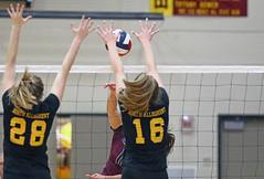 IMG_4711 (SJH Foto) Tags: girls high school volleyball garnet valley north allegheny state semifinals net battle spike block action shot jump midair
